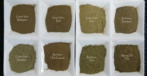 different kratom strains reddit